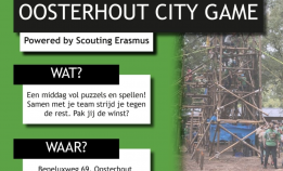 Oosterhout City Game